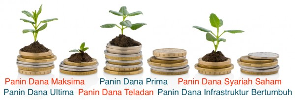 Coins with small plants growing symbolizes investments